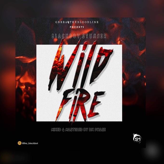 [MUSIC] Blackboy stunner - Wild fire