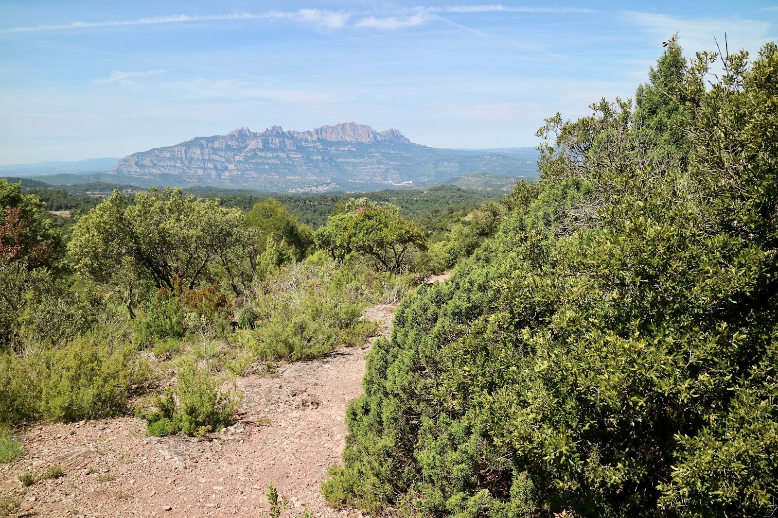 mountain hiking and wine tasting, barcelona