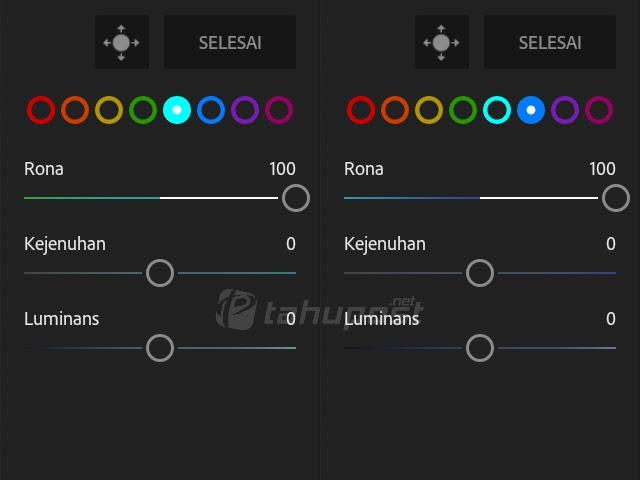 Cara Mengubah Warna Daun di Lightroom Android Menjadi Ungu