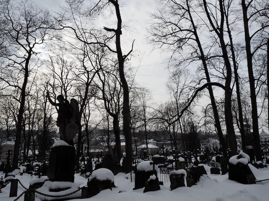 Bernardinų kapinės
