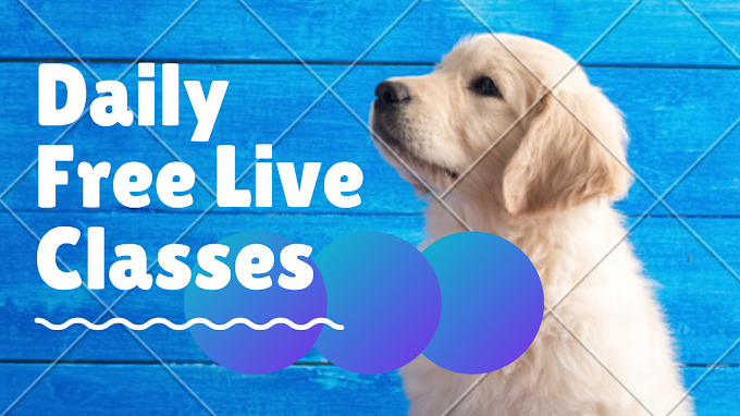 Daily Creativelive Free Live Class