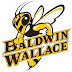 Local college students earn merit scholarships at Baldwin Wallace University