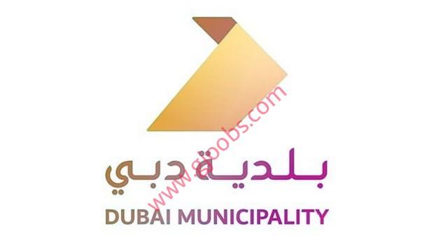 خالية ببلدية دبي لمختلف التخصصات