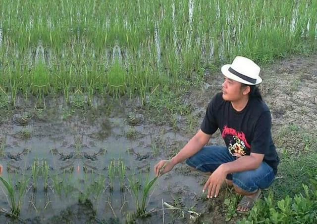 Pemerintah buka impor beras petanikecewa