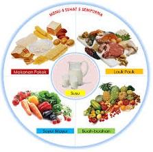 Informasi Tentang Ada Beberapa Kandungan Yang Terdapat Dari Makanan 4 Sehat 5 Sempurna