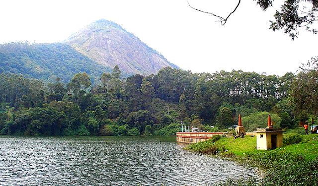 Premium Hotels in Munnar