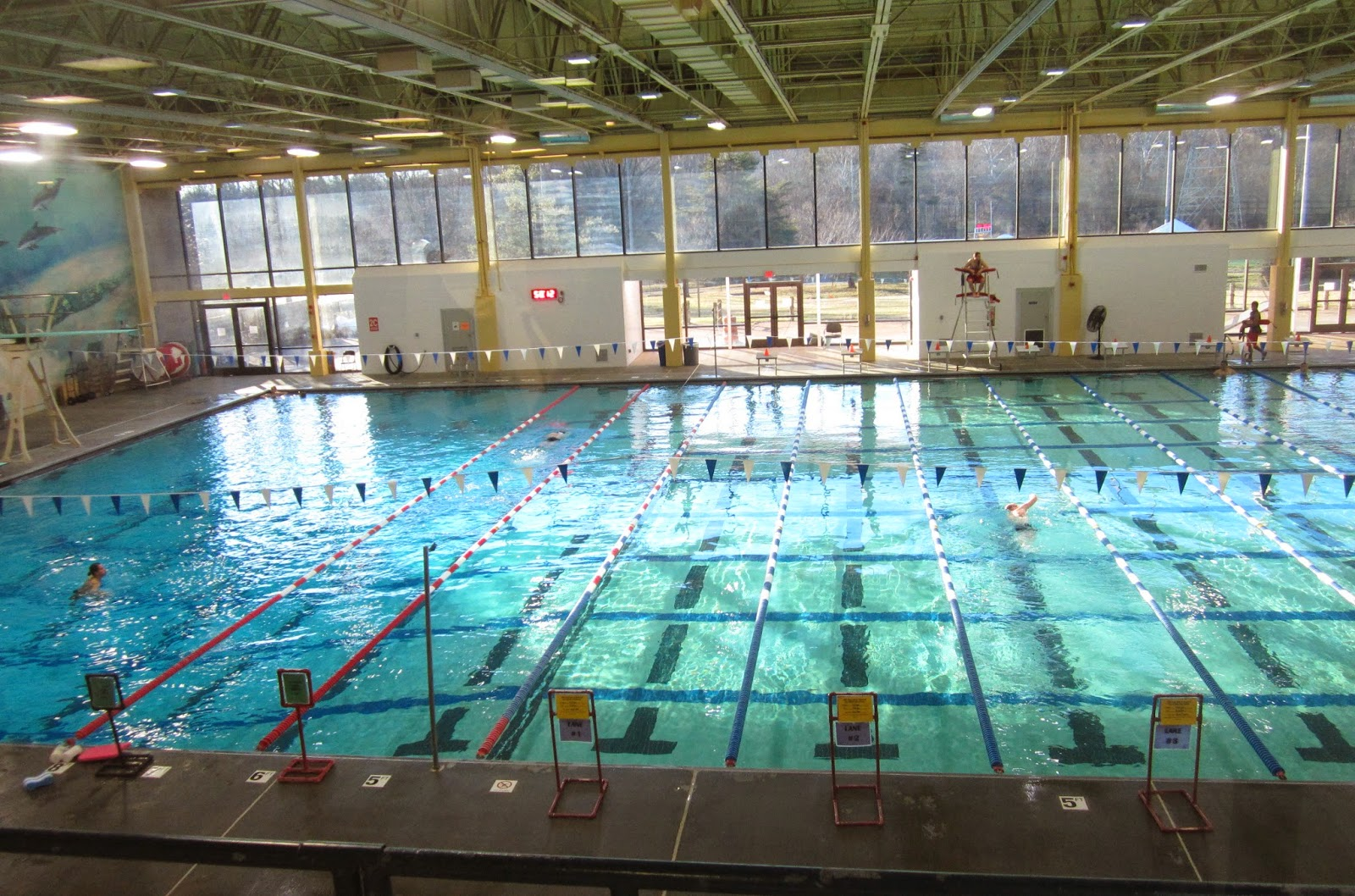 The annandale blog new friends group forming to support - Spring hill recreation center swimming pool ...