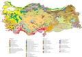 Çeşitli Türkiye Haritası