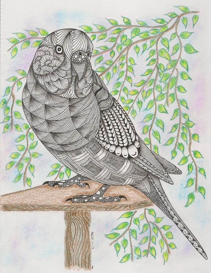 12-Parakeet-Adri-van-Garderen-Animals-Given-the-Zentangle-Treatment-www-designstack-co