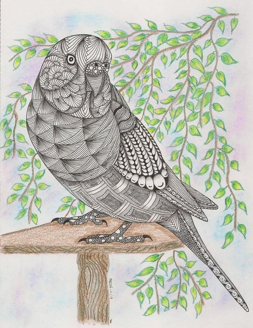 12-Parakeet-Adri-van-Garderen-Animals-Given-the-Zentangle-Treatment-www-designstack-co
