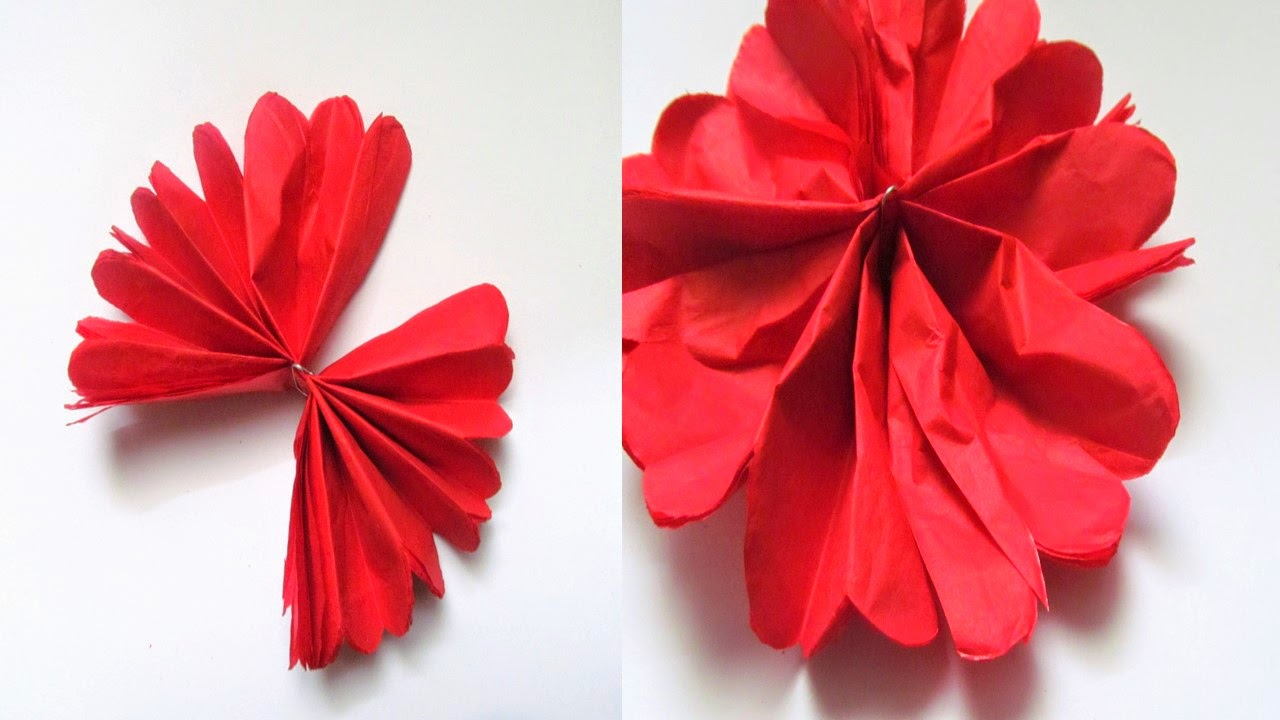 make flowers out of tissue paper Find this pin and more on flowers, flowers, flowers by salsarican paper flowers -party decoration tutorial --- flowers for a poster like butterflies these would.