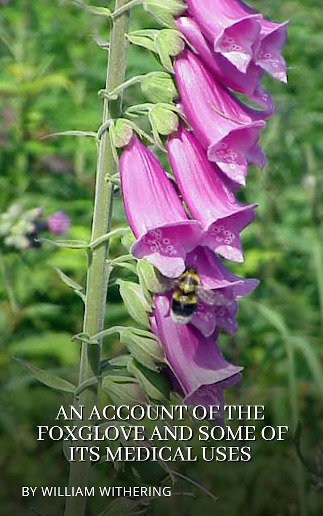 An Account of the Foxglove and some of its Medical Uses (Part 1)
