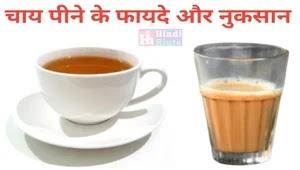 चाय पीने के विशेष फायदे और नुकसान - Tea drinking benefits and loss Hindi