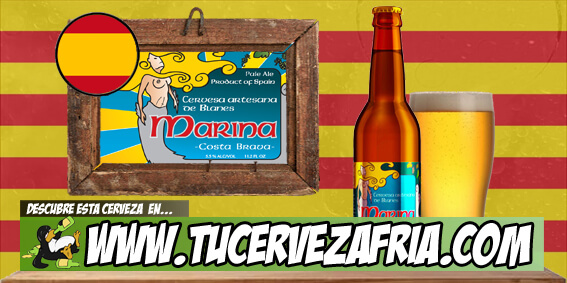 MARINA Summer Ale analisis