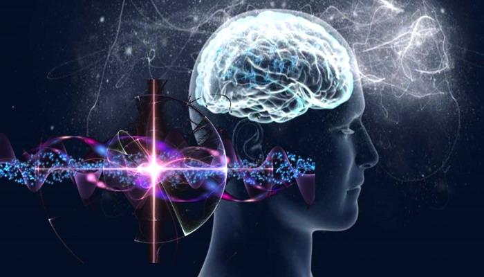 Los científicos descubren nuevo ADN que anuncia la evolución de la conciencia humana