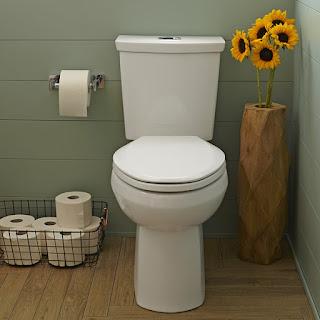 http://houstontxdraincleaning.com/toilet-repair.html