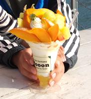 Fruit Factory Mooon De Retro