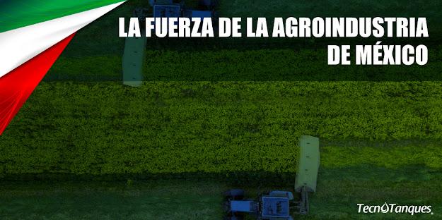 la-fuerza-de-la-agroindustria-en-mexico