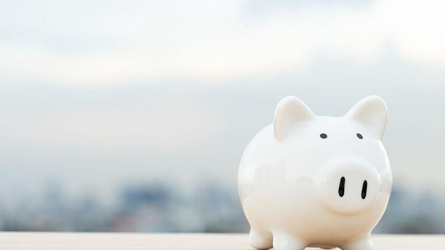 Raise Money Smart Kids, piggy bank
