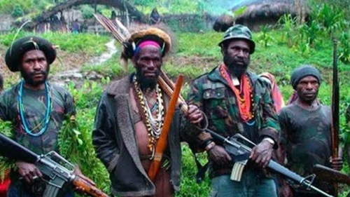 Dorong Keamanan Dan Keutuhan Negara, IYLC Institute Sarankan Pemerintah Menaikkan Status KKB Di Papua