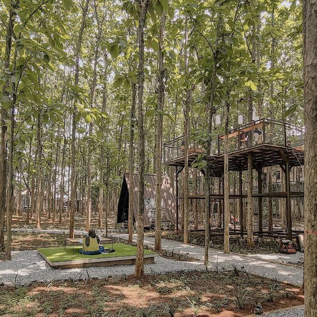 Hutan Jati Cafe & Gelato Purwakarta