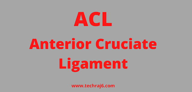 ACL full form, What is the full form of ACL