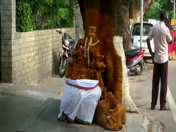 #Tamil Nadu: Locals worship Lord #Ganesh in a tree trunk