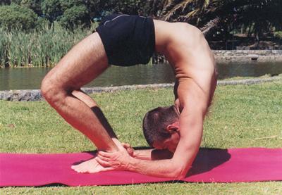 adhara yoga diccionario de asanas letras c y d