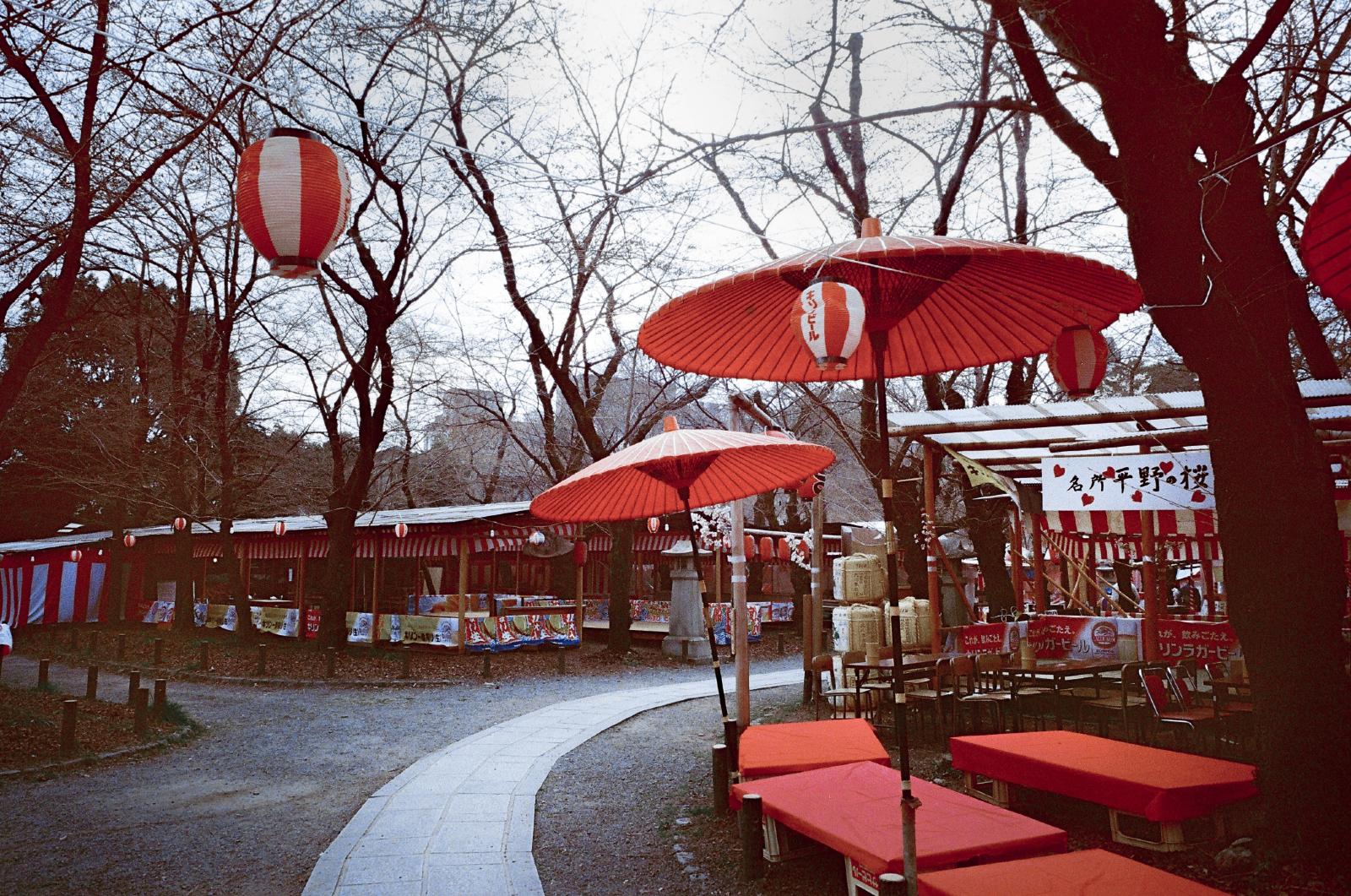 「平野神社」京都 | 櫻花祭 | 攝影集