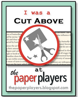 http://thepaperplayers.blogspot.com/2014/07/winners-for-pp202-sandys-tic-tac-toe.html