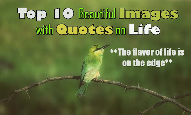Beautiful images with quotes on life