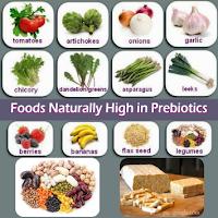 Prebiotik adalah Makanan bagi Probiotik untuk Anak Autis