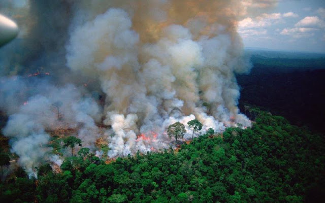 Καίγεται ο Αμαζόνιος - 73 χιλιάδες πυρκαγιές από τον Ιανουάριο (βίντεο)