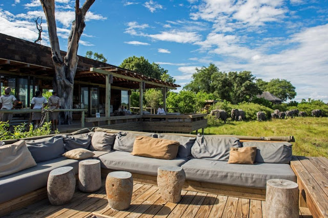 Vumbura Plains Lodge, Botswana, glamping, beautiful lodge, African lodge, wildlife, bush,
