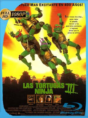 Las Tortugas Ninja III (1993) [1080p] Latino [GoogleDrive] [MasterAnime]