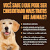 COMUNICADO: LEI Nº 6.810, DE 02 DE FEVEREIRO DE 2021 – MAUS-TRATOS A ANIMAIS
