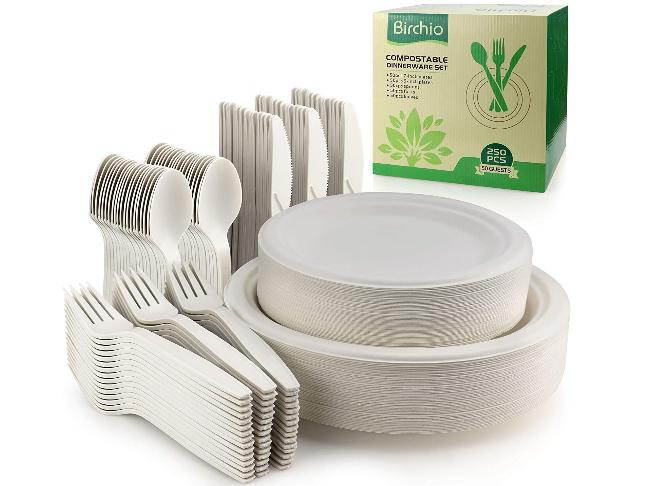 biodegradable paper plates set
