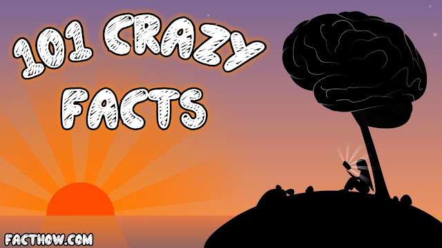 101 amazing facts and interesting facts hindi
