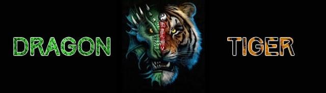 Tip dan Trik Bermain Dragon-Tiger