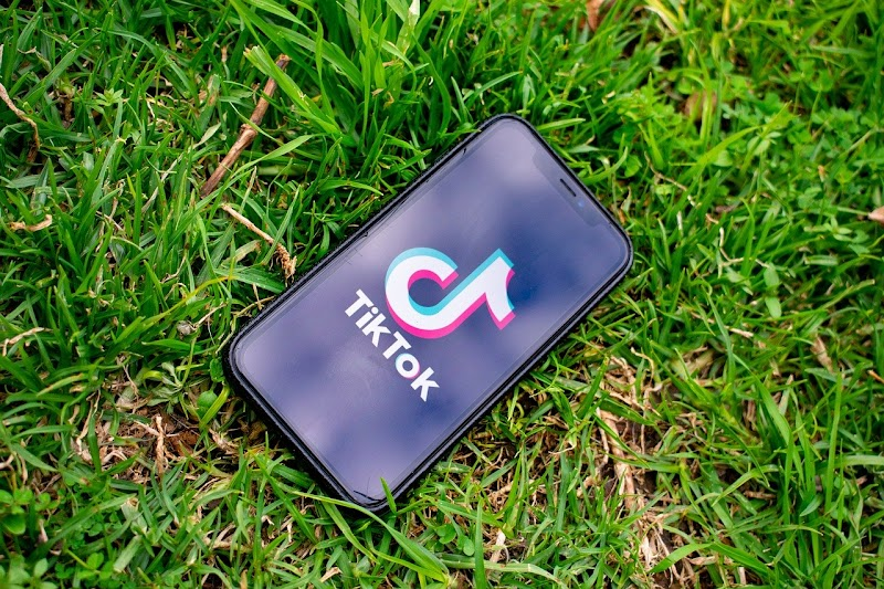 Why was TikTok banned ? and why should apps like TikTok stay banned ?