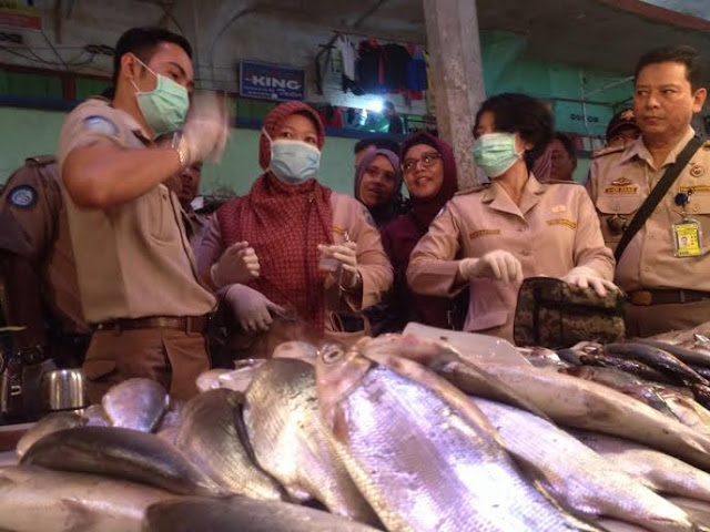 Di Pasar Palembang, Beredar Ikan Berformalin