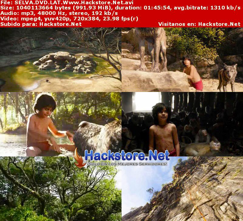 Capturas de El Libro de la Selva (2016) DVDRip Latino