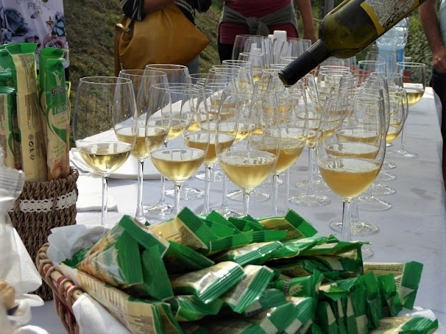 degustazioni vini cascina piano angera