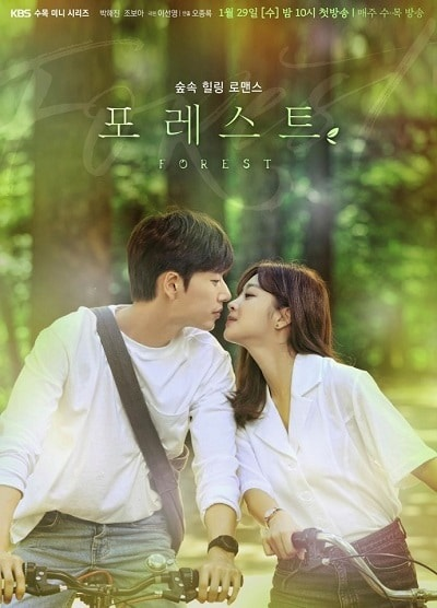 Review Forest Korean Drama (Starring Park Hae Jin dan Jo Bo Ah)