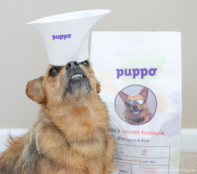 Jada's secret formula with puppo
