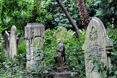 An old cemetery in the woods