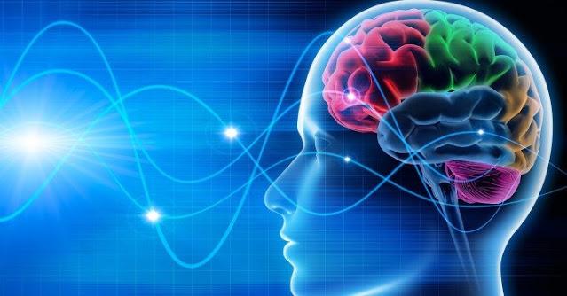 Ngoài 5 giác quan, cơ thể con người còn nhận thức thế giới bằng những cách khác