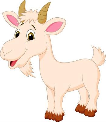 gambar kambing kartun