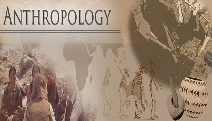 Anthropology homework help online