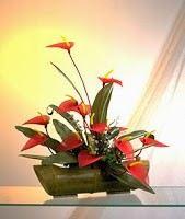 Cắm hoa nhà thờ, cắm hoa phụng vụ, cắm hoa bàn thờ